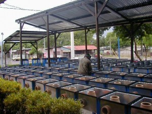 Primeira fábrica de ecofogones, na Nicarágua 2001.